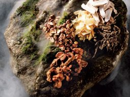 4 loại thảo mộc cho nhan sắc