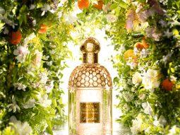 7 mùi hương lý tưởng cho mùa hè