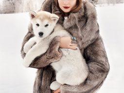 Bộ ảnh thời trang: White Christmas