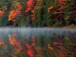 Tận hưởng mùa thu vàng ở Maine