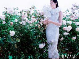 """Hoa hậu Hoàn Vũ Philippines """"lạc"""" giữa vườn hồng của Đỗ Mạnh Cường"""