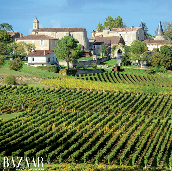 Bordeaux còn tự hào về một số ngọn đồi thiêng nhất trái đất dành cho rượu vang