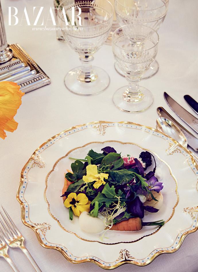 Món salad từ rau củ