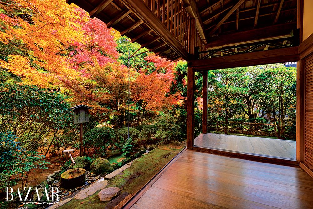 Vườn thiền Ryoan-ji