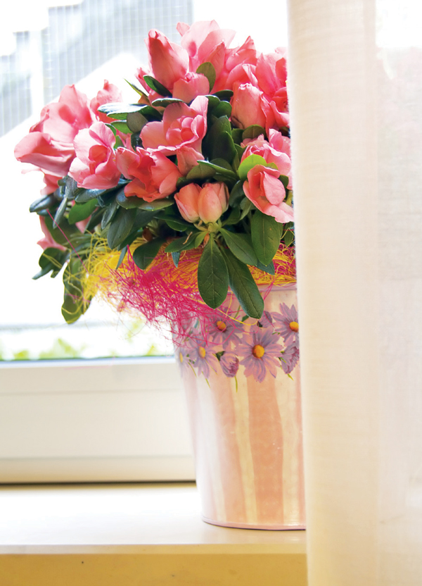 Một lọ hoa màu hồng sẽ tăng thêm may mắn trong tình yêu cho một người còn lẻ bóng