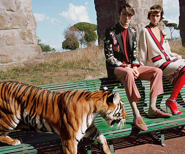gucci-ss17-full-campaign-article