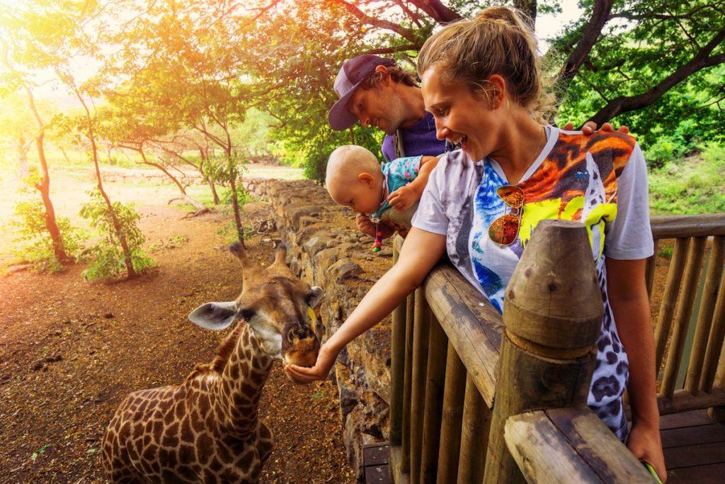 20171605-la-veranda-safari