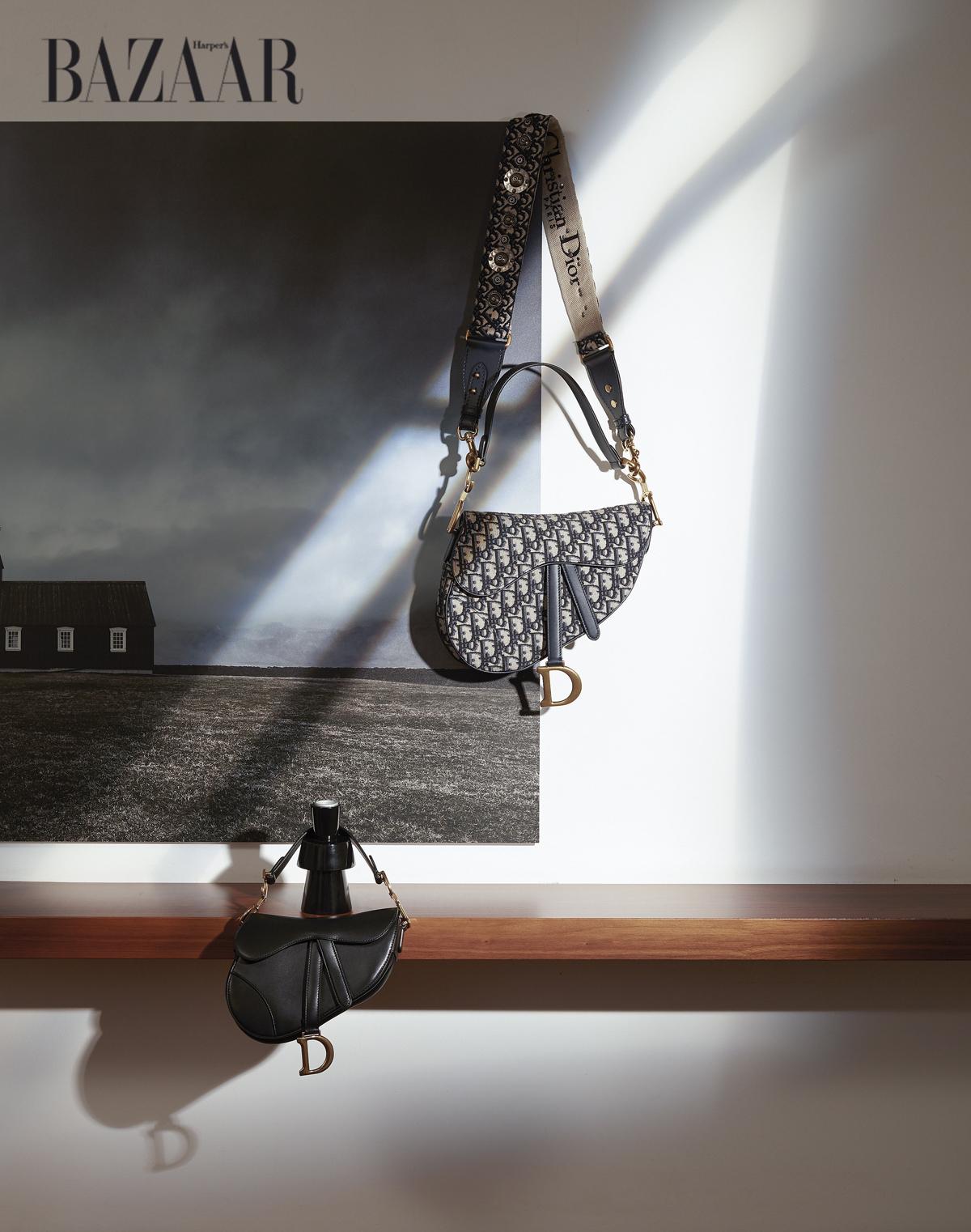 """Túi xách saddle chất liệu da và canvas, chữ """"d"""" mạ vàng tạo điểm nhấn nổi bật, Dior"""