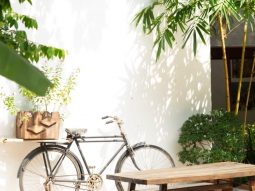 Khám phá không gian xanh mát của nhà hàng HUM Vegetarian Thảo Điền