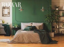 Trang trí nhà màu xanh rêu, cách tạo góc bình yên cho người hướng nội