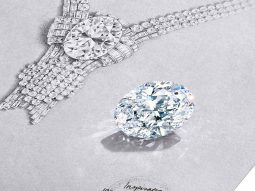 Tiffany & Co ăn mừng cửa hàng flagship mới với viên kim cương 80 carat