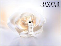 Dior Prestige Light-In-White: Tinh chất dưỡng trắng da với sức mạnh từ hoa hồng trắng