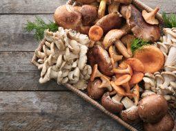 9 lợi ích của nấm, loại thực phẩm ăn chay hiếm hoi đủ sức thay thế thịt