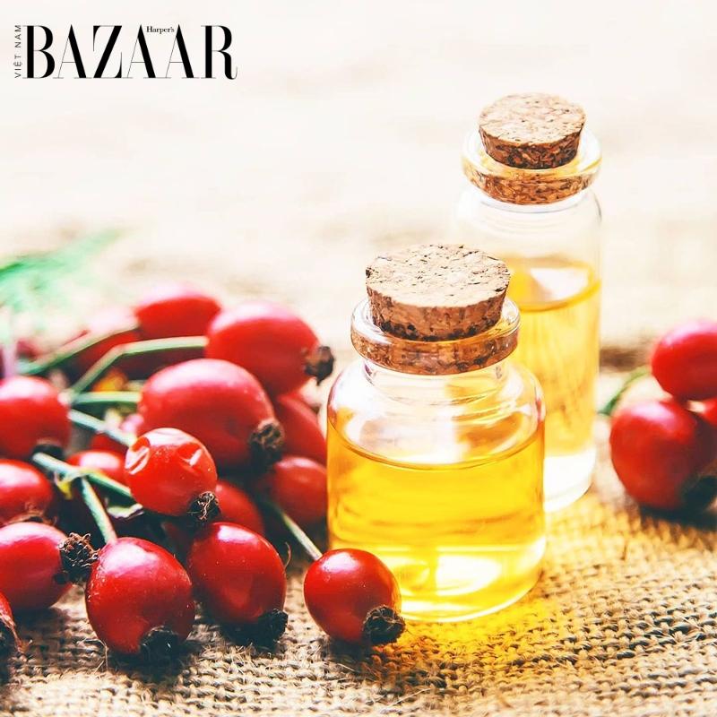 BZ-da-chay-nang-rosehip-oil