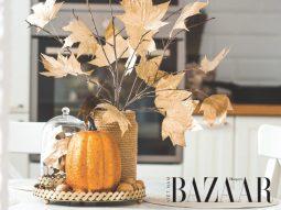 Mang mùa thu vào nhà qua chiếc lá phong màu vàng