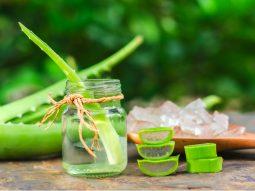 3 cách làm nước ép nha đam giảm cân ngon và tốt cho sức khỏe