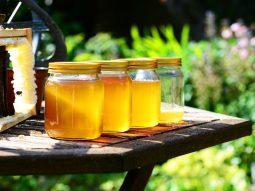 Giải đáp thắc mắc giảm cân bằng mật ong có hiệu quả không